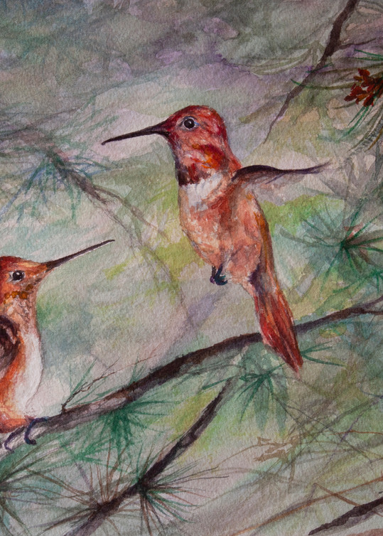 Lindy Cook Severns Art   Comparing Wing Spans, print
