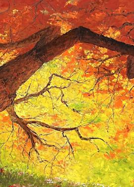 Portrait Of Acer Art | Kurt A. Weiser Fine Art