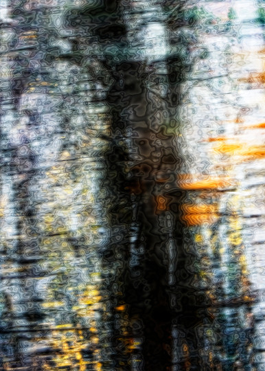 Movement And Reflection Photography Art | Mindy Fine Art Photography