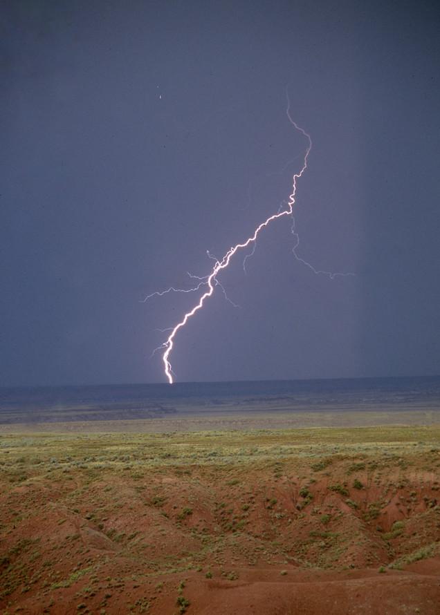 Desert Fireworks Photography Art   Great Wildlife Photos, LLC
