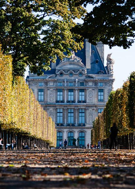 Tuileries Garden Paris Fall Day