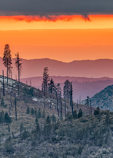 Yosemite Survival Art | Michael Blanchard Inspirational Photography - Crossroads Gallery