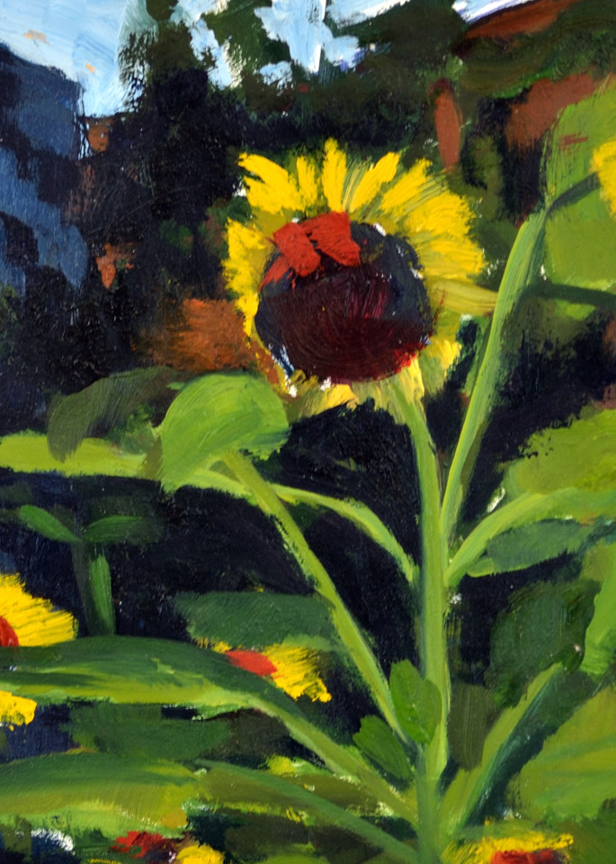 Mini Sunflowers Print Art | Jenn Hallgren Artist
