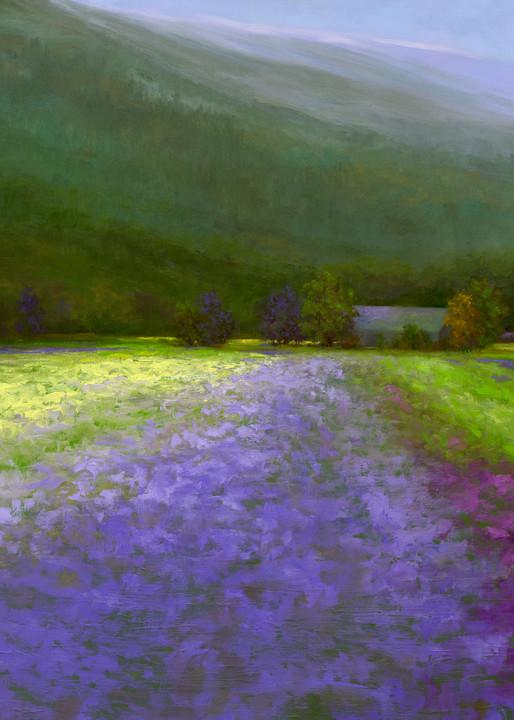 Coastal Blooms Art | SHEILA FINCH FINE ART