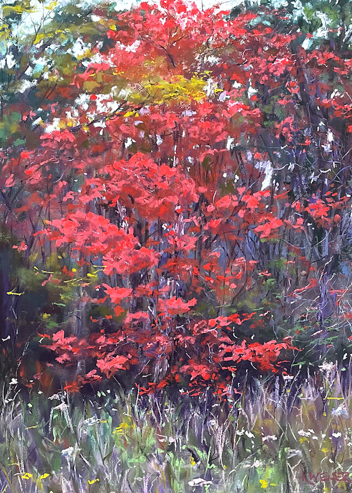 Autumn Maple Art | Kurt A. Weiser Fine Art
