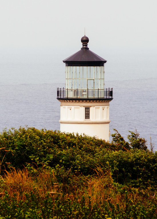 Cape Disappointment 2019