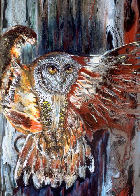 Phoenix Owl Art   lisaabbott
