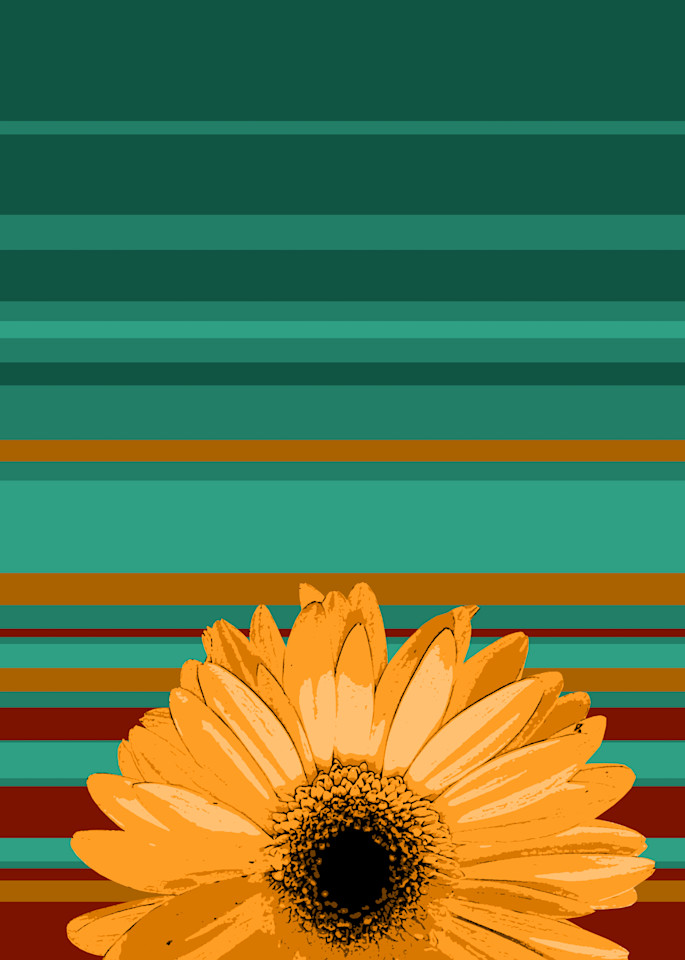 Sunshine Daisy #1 Art | Jon Savage Contemporary Art