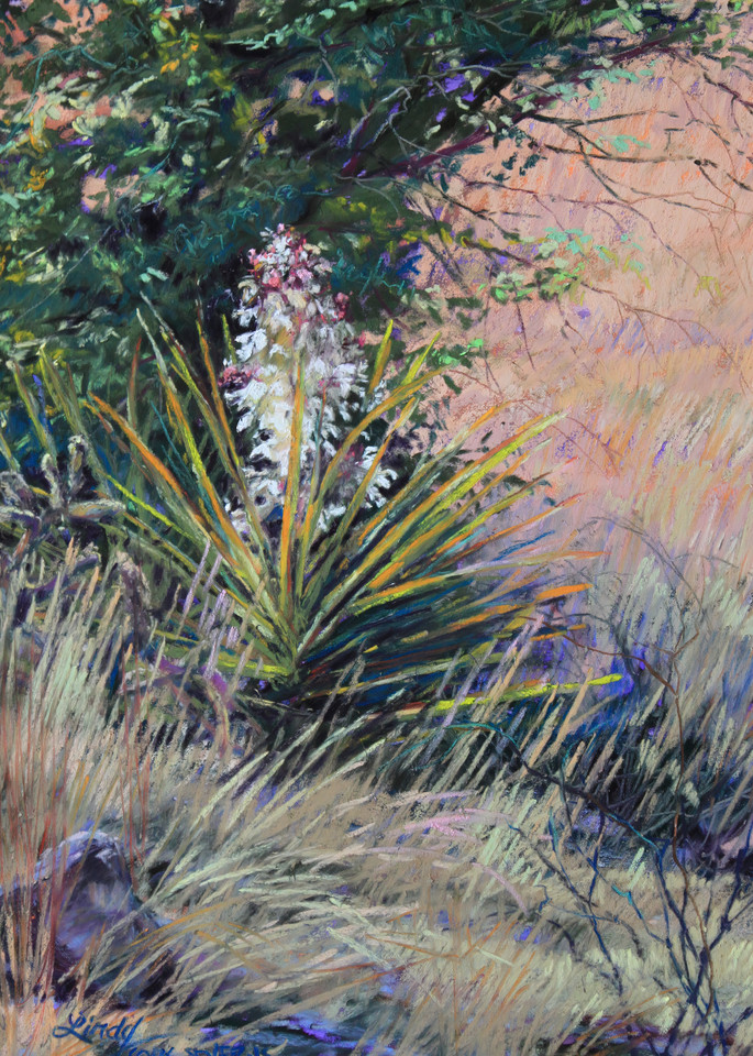 Lindy Cook Severns Art   Spring in West Texas, print