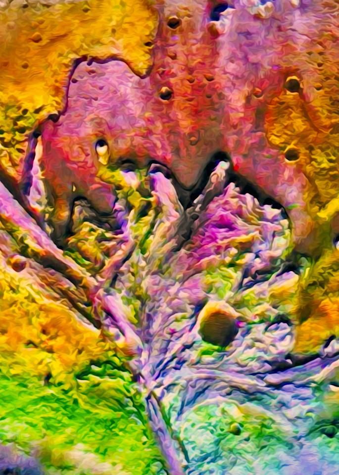 Mars Jezero Art | Light Pixie Studio