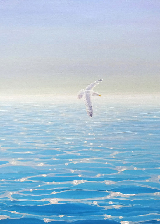 calm blue seascape with a gull