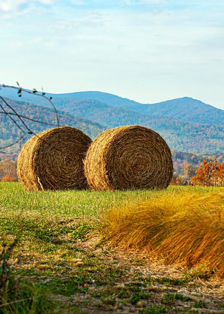 Virginia Farm
