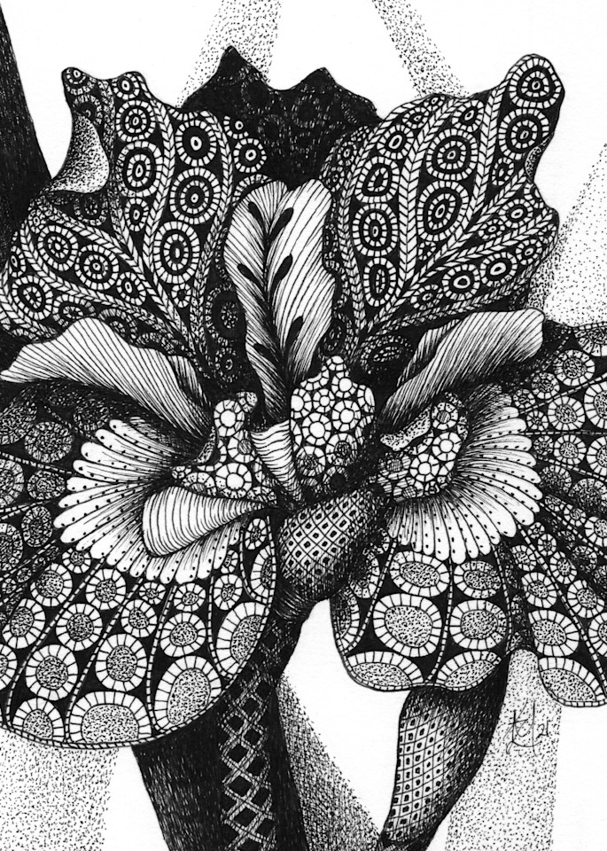 "Butterfly Bloom Art   Kristin Moger ""Seriously Fun Art"""