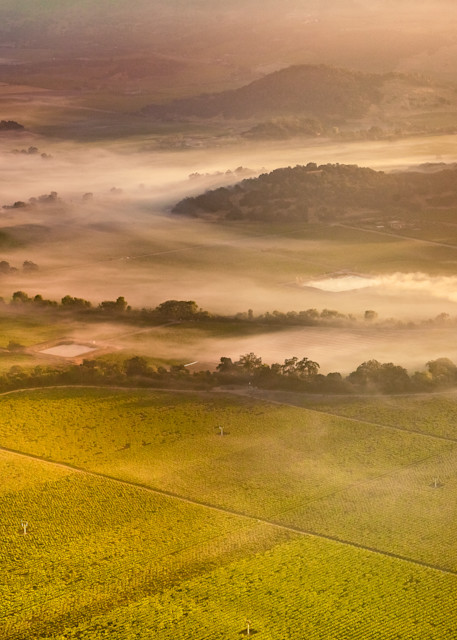 Aerial view of morning fog in Napa Valley