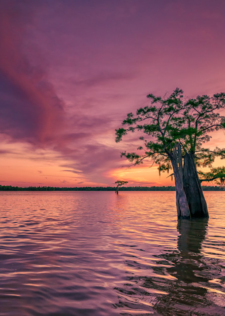 Atchafalaya Sunset | Shop Photography by Rick Berk