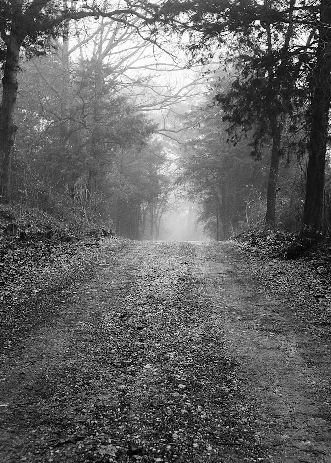 Country road in Texas by Teresa Berg