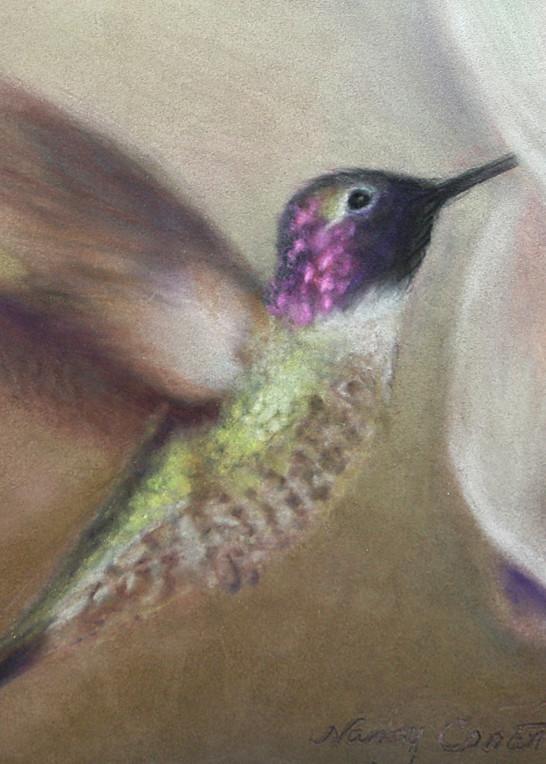 Hummingbird Don't Fly Away by Nancy Conant is hand painted hummingbird art