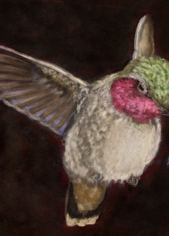 Ruby Throated Hummingbird by Nancy Conant