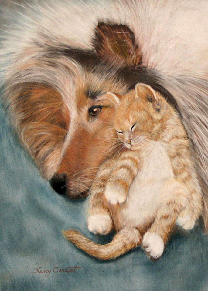 Dog and cat Snuggle Buddies by Nancy Conant