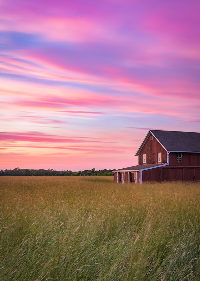 Homestead Photography Art | Teaga Photo