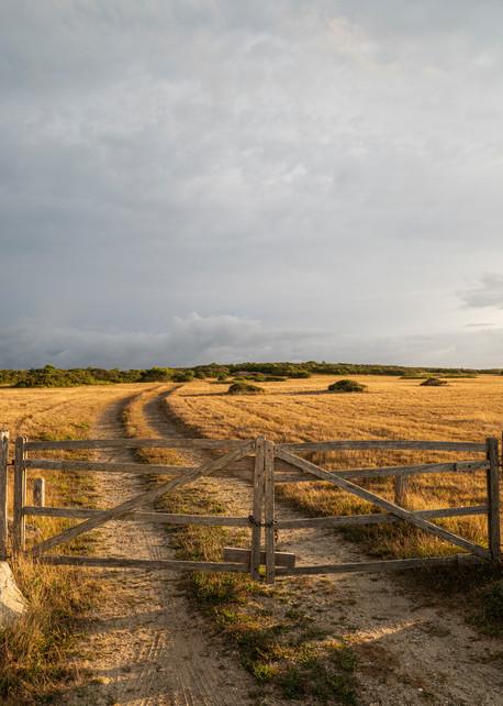 Golden Gate Photography Art | Kit Noble Photography