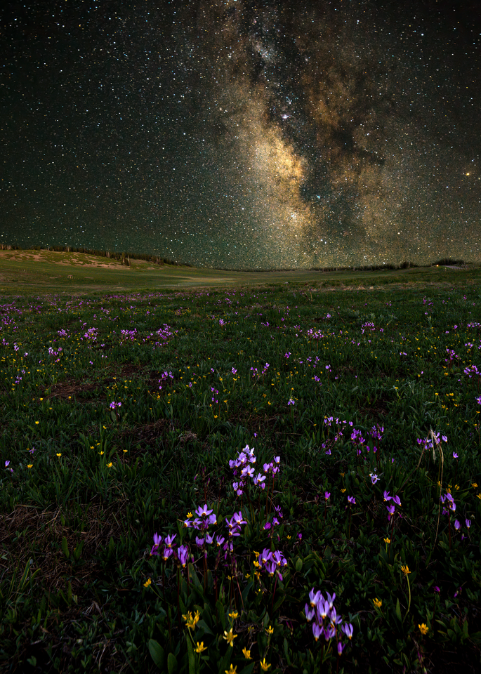 Cedar Breaks Starscape #1 Photography Art | Craig Primas Photography