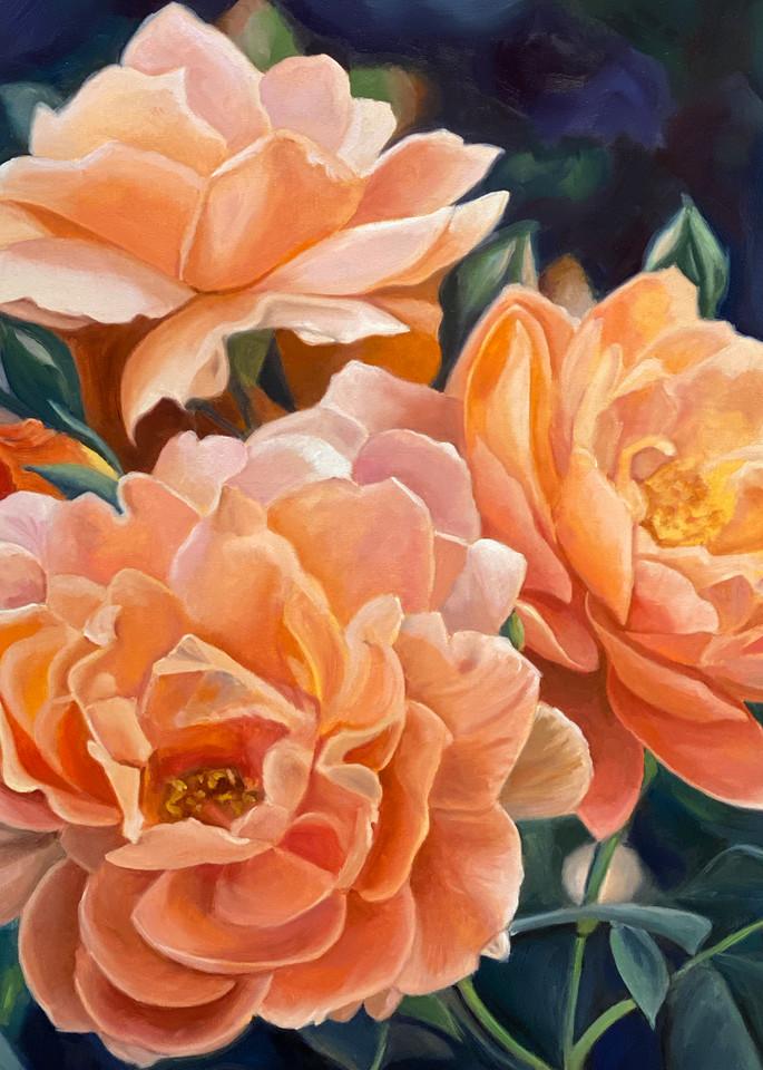 Peach China Roses