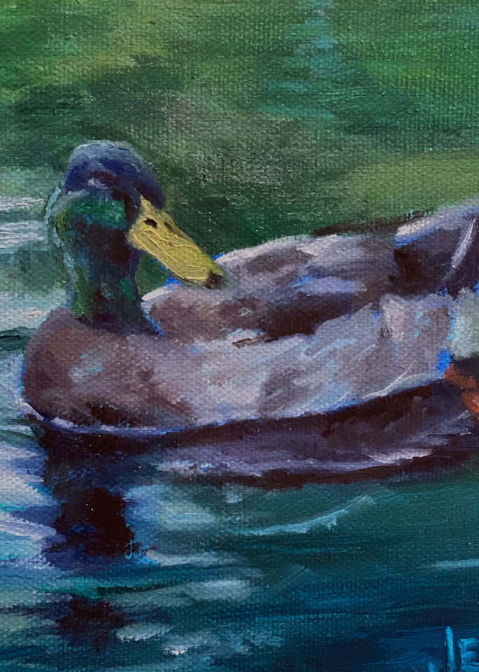 Tyler the Duck in Tyler State Park