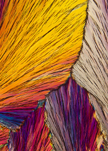 Come Together Art | Carol Roullard Art