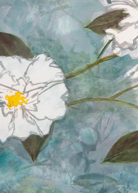 Double Whites And Shadows Art | Elaine Schaefer Hudson Art