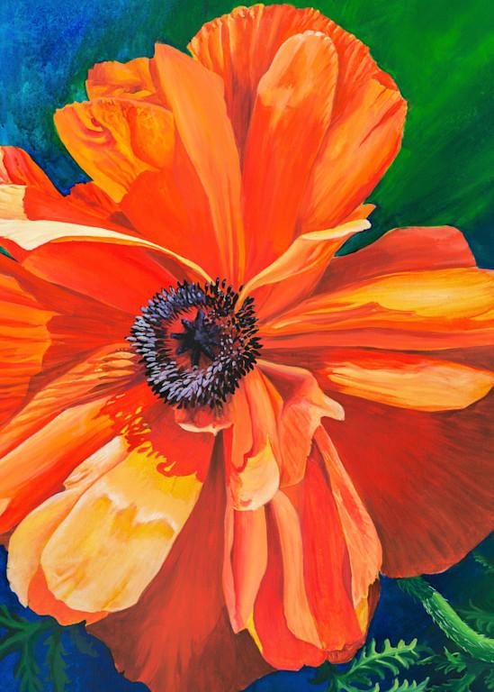 Poppy Art | Leanne Hanson Art