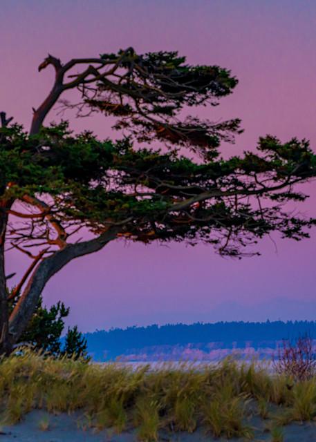 West Coast Wonders Photography Art   kramkranphoto