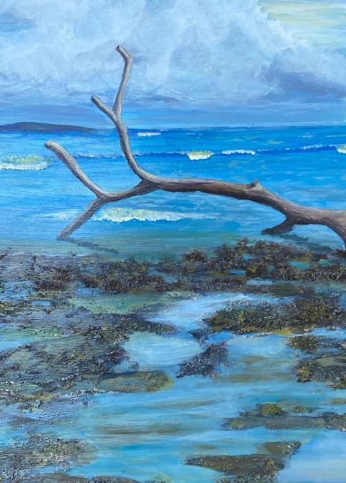 Costa Rica Beach Art   Rowena Art Shop