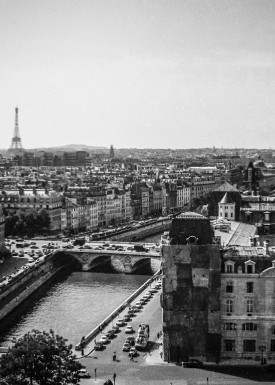 Paris, View From Notre Dame Photography Art | Nick Levitin Photography