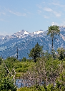 Tetons In The Distance, Panoramic View  Photography Art | Alina Marin-Bliach Photography/alinabstudios LLC