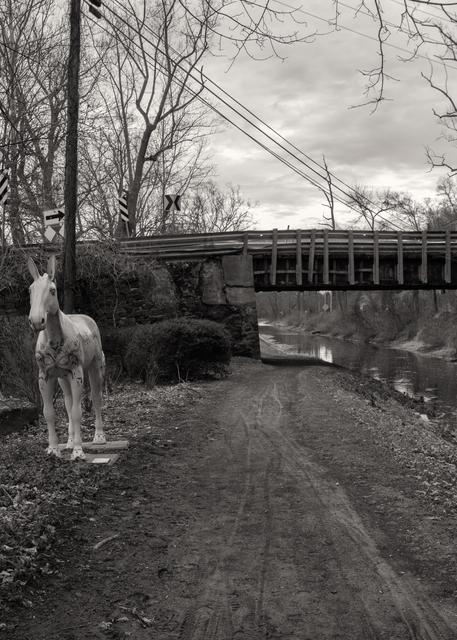 Canal Mule Photography Art   Alina Marin-Bliach Photography/alinabstudios LLC
