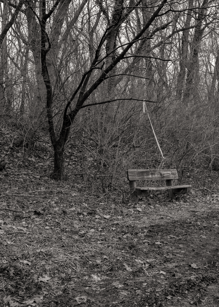Meditation Benches Photography Art   Alina Marin-Bliach Photography/alinabstudios LLC