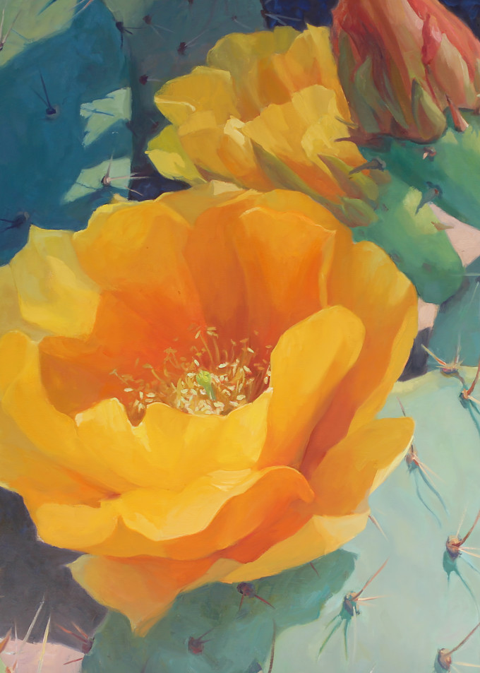 Cactus Flowers 9 Art   Diehl Fine Art