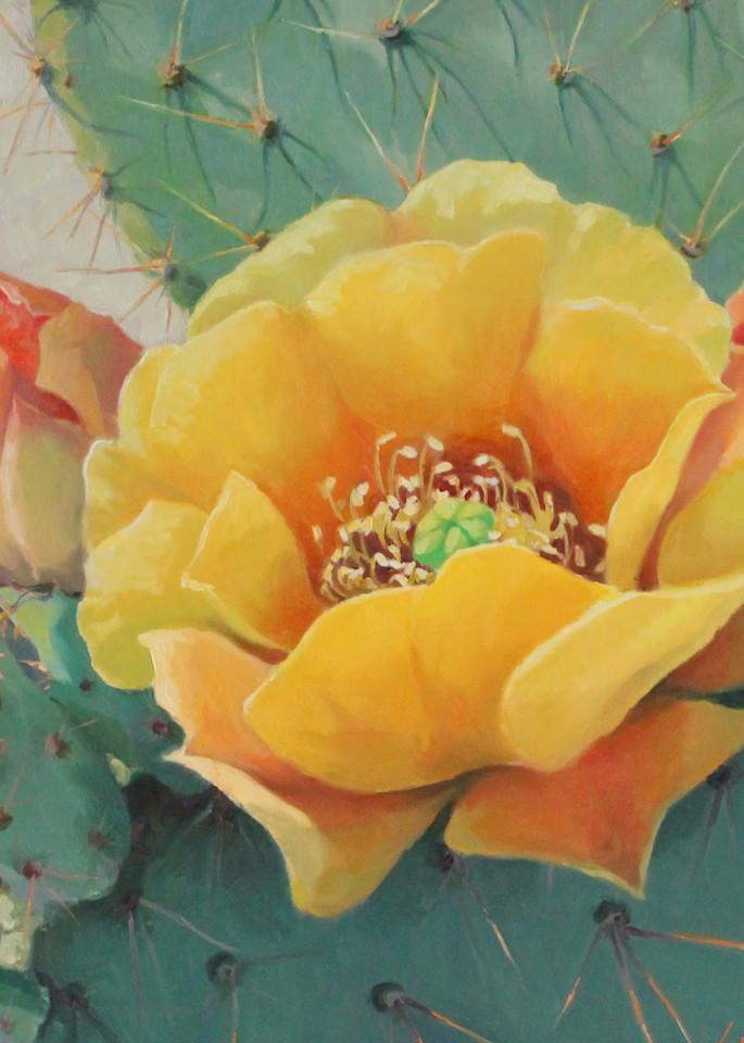 Cactus Flowers Art   Diehl Fine Art