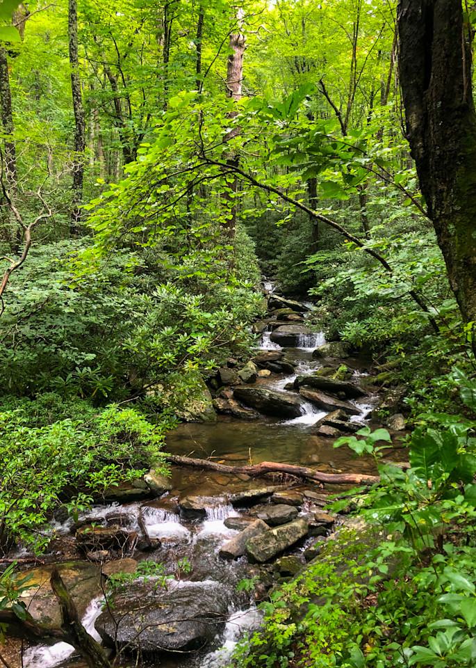 Greybeard Cascades Photography Art | Blue Ridge Zen