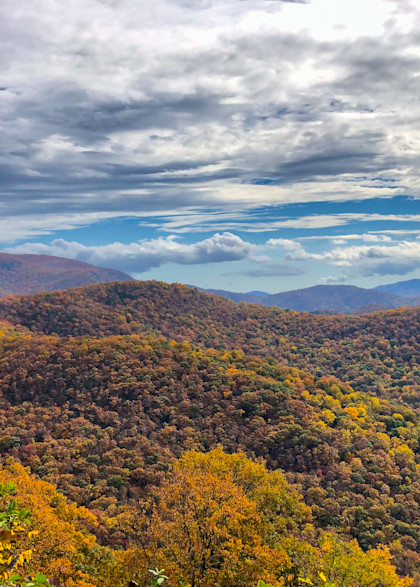 Autumn In Shope Creek Valley 2020 Photography Art | Blue Ridge Zen