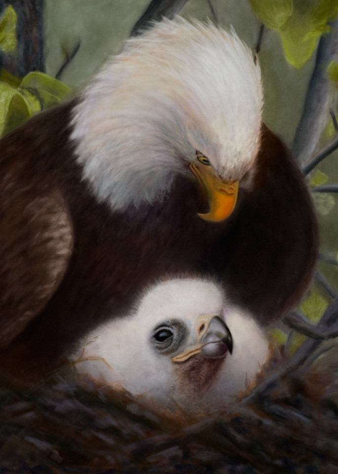 Beneath the Shadow of His Wings by Nancy Conant is a beautiful depiction of an eagle protecting its young.