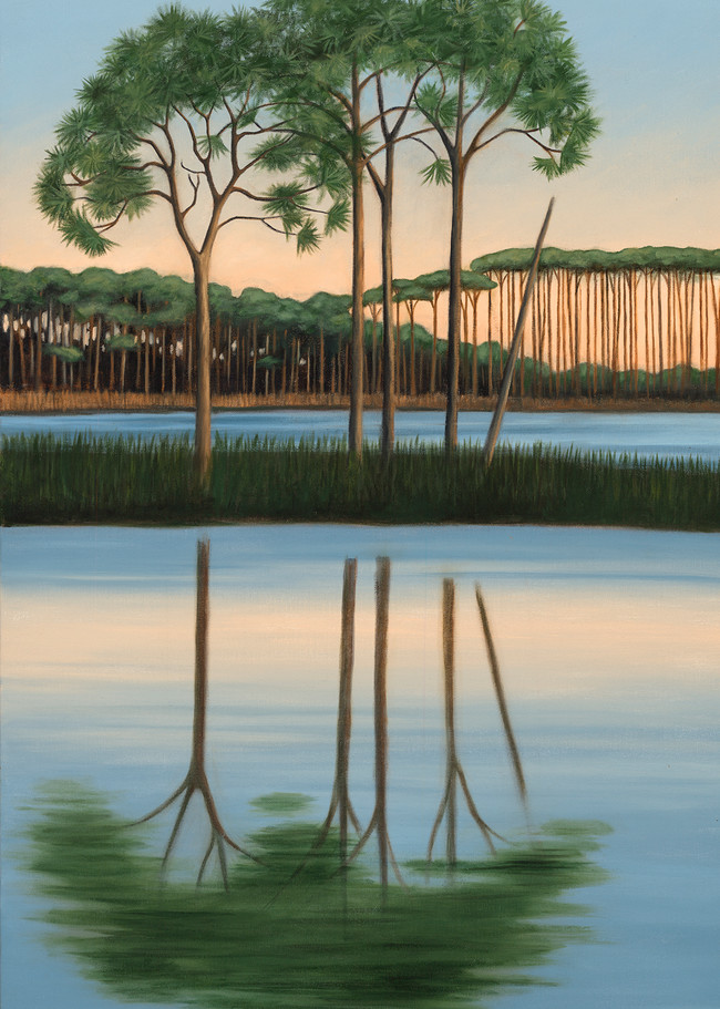 A Stand Of Pines Art   Margaret Biggs Fine Art