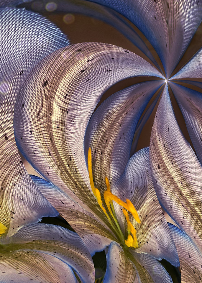 Circular Flow Photography Art   Kathleen Messmer Photography