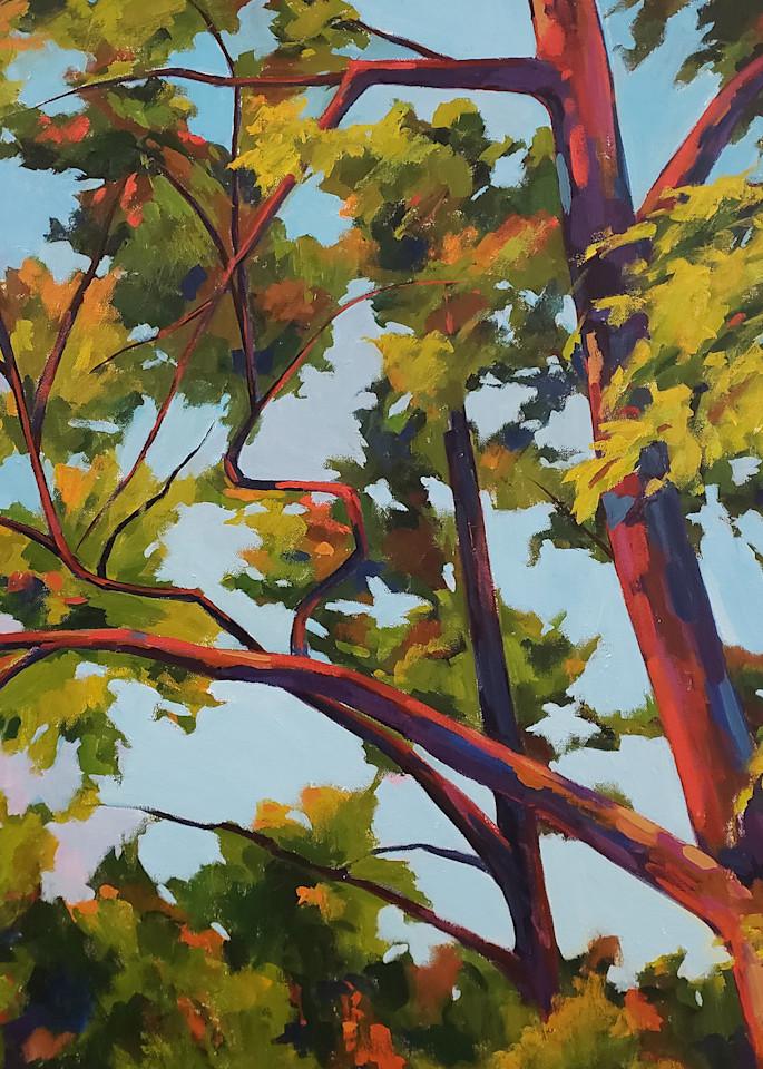 Looking Up Ii  Art | Jenn Hallgren Artist