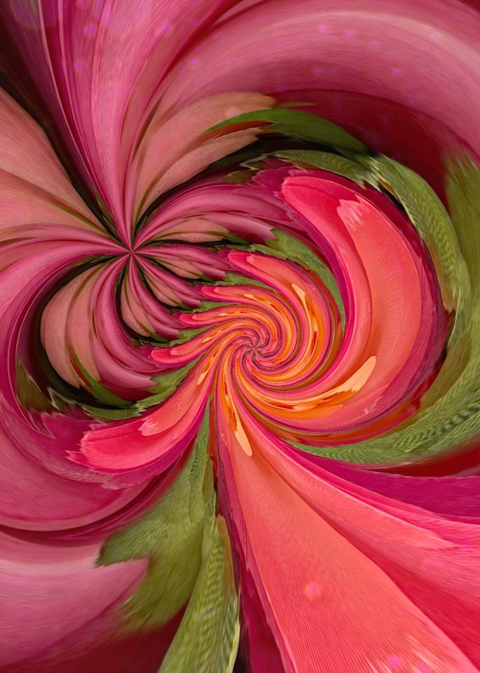 Circular Ranunculus Photography Art | Kathleen Messmer Photography