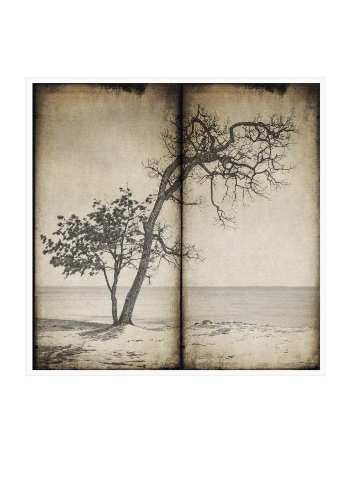 3 Art | Roy Fraser Photographer