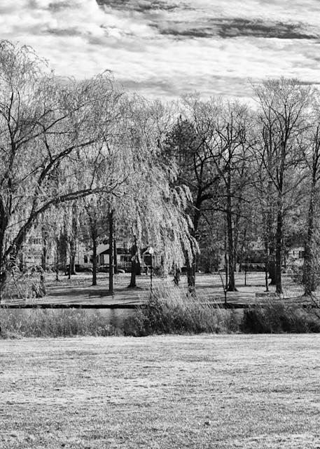 Verona Park, Fall Photography Art   Nick Levitin Photography