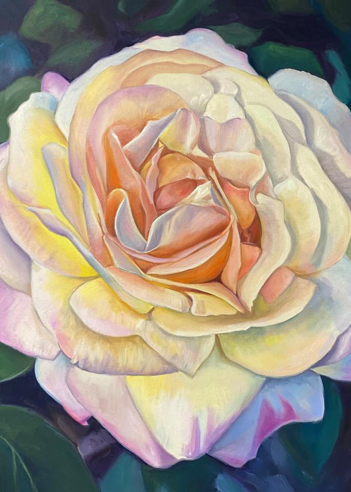 Peace Rose  Art | Jennifer Zardavets Art