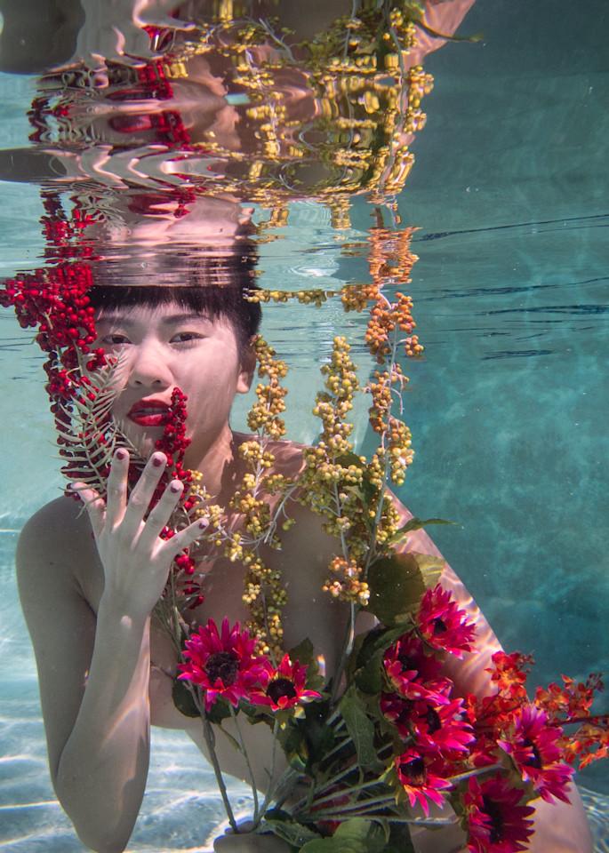 Cassava 1235 Photography Art | Dan Katz, Inc.